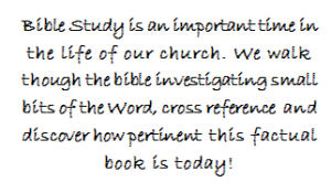 bible study write-up